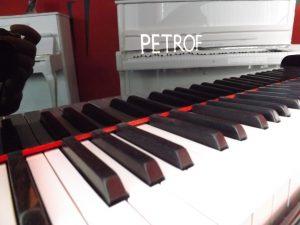 Petrof III 004